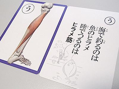 裸足ランニングの時には腓腹筋とともにここを使う。