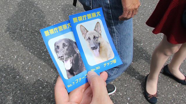 警察犬たちの写真入り名刺をゲット。二匹とも舌を出しててかわいい