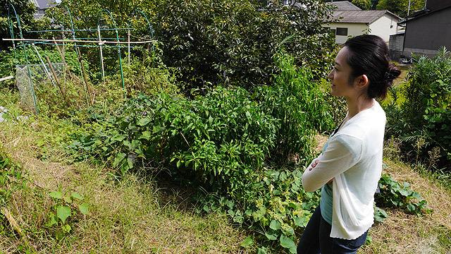 研究員の惠谷浩子さんに紹介してもらいます