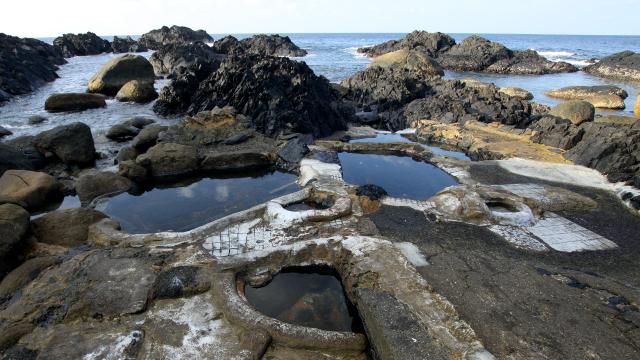 野性味溢れる屋久島の中でも、温泉のワイルドっぷりがとにかく凄い