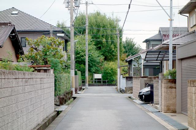 こちらも見に行った。住宅街の道路の正面に、いきなりこんもりと。