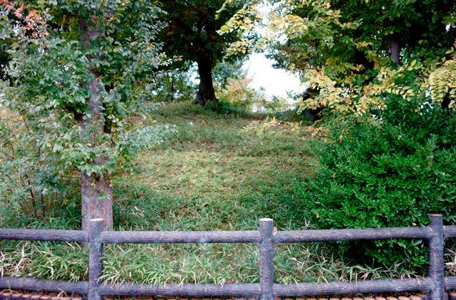 とはいえ近づいて見ると、なんというか、ふつうにいろいろ生い茂っちゃって古墳感はまったくない。まあほとんどの古墳はこんなもんなんでしょうねー。