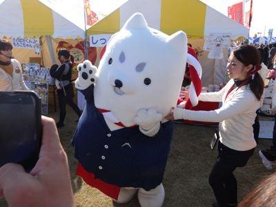 静岡県磐田のしっぺい。このコ、人気マンガ『鬼灯の冷徹』に出て来るイヌ、シロにそっくりなんですよね……。日本犬で白かったら、そりゃ似てるよなあ。