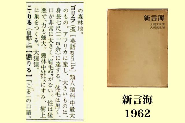 「新言海」日本書院