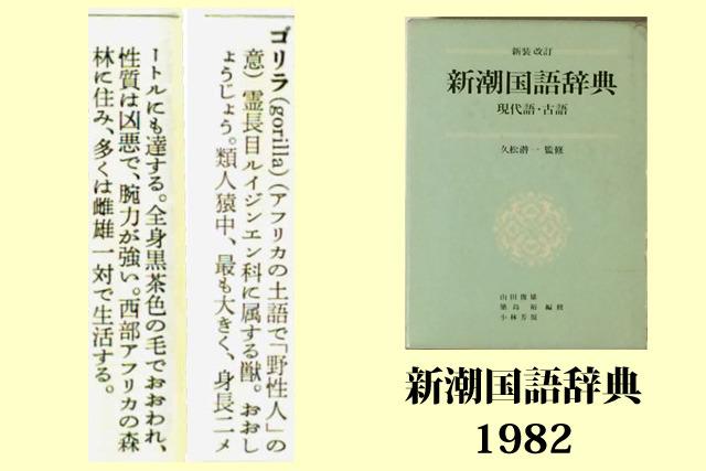 「新潮国語辞典」新潮社