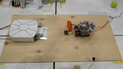 試合が始まると同時に、土俵に星を降らせるセレモニーを執り行う舞浜からの刺客。