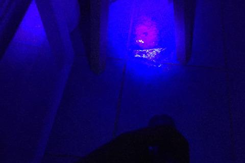試しに部屋で使ってみたら床に謎の汚れ発見。このようにわりと鮮明に浮かび上がる