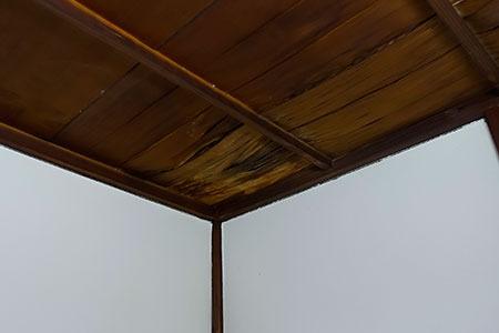 居間の天井もヤバイことに