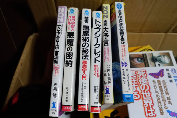 この手の本が並んでる本棚……イヤだなぁ