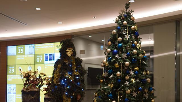 クリスマスツリーになりました