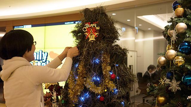 飾りをつけてもらったらクリスマスツリーに見えるだろうか