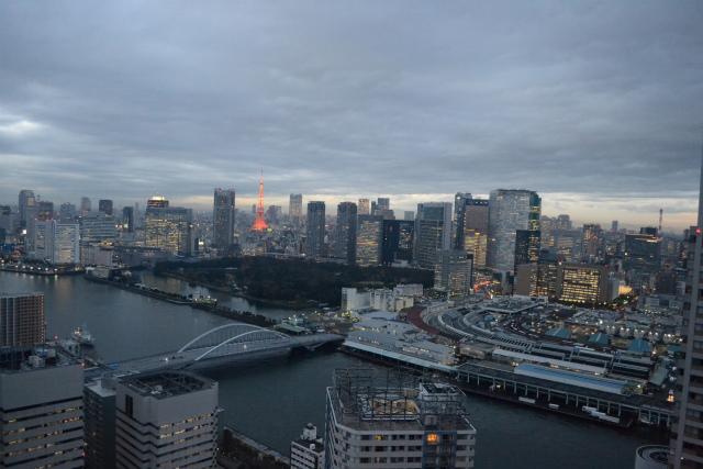 東京タワーが牛丼の紅しょうがみたいな彩りできれい