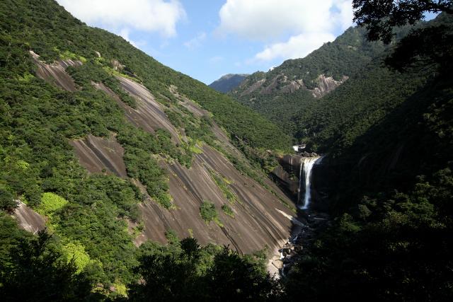 巨大な花崗岩と屋久杉がダイナミックな屋久島