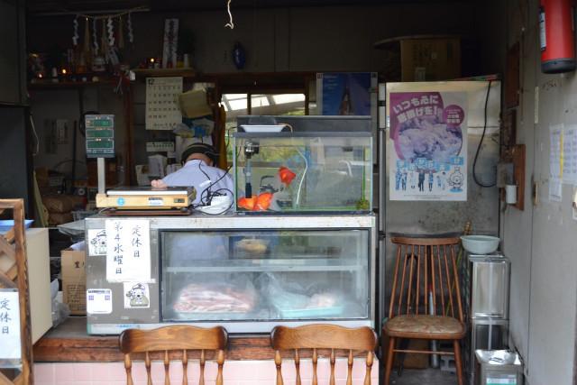 でかい金魚はおそらくご主人の趣味なので安心してほしい
