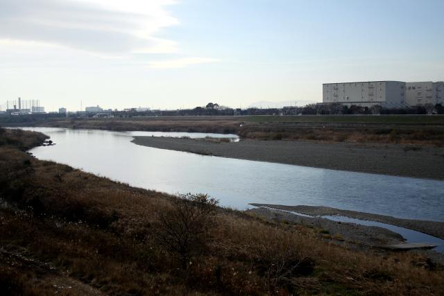 確かに、冬の相模川は寒々しい感じである