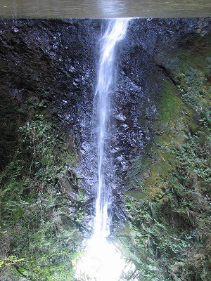 黒滝(千葉県)