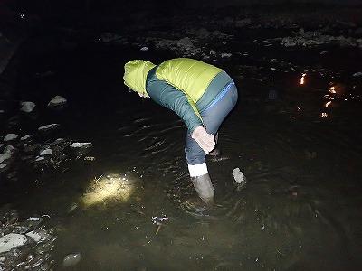 まだ冬本番ではないが、川に膝までつかるとやっぱり結構寒い。