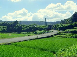 山と言えば、有明海沿岸は緑も豊か。今度は夏にお邪魔しよう。