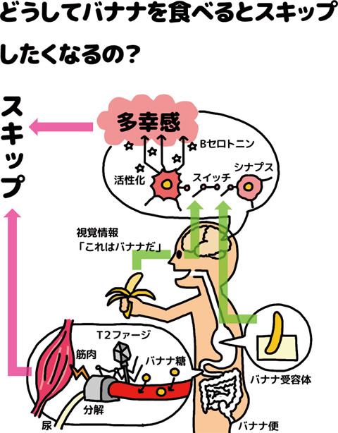 バナナの効能を表した図