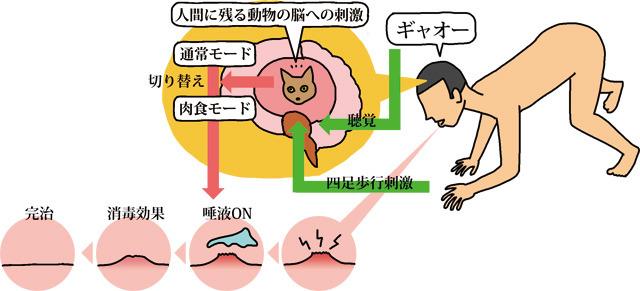 口内炎を早く治す方法とその原理