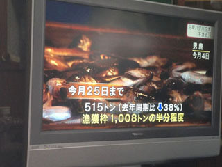 ハタハタの漁獲高は毎年テレビのニュースになります(もちろんローカル限定)