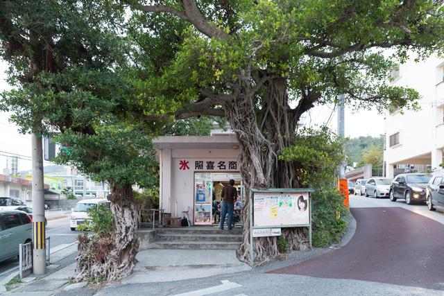 3本のガジュマルに覆われた外観が特徴的な、昔ながらの小さな商店。