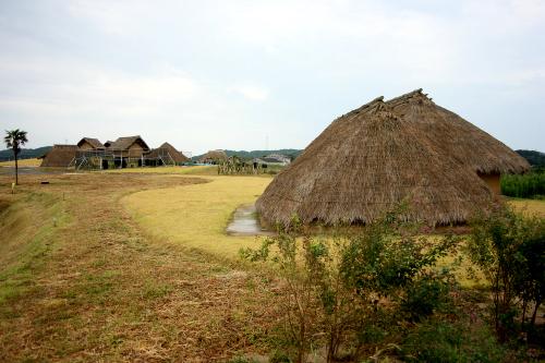 壱岐島にある「原の辻(はるのつじ)遺跡」。魏志倭人伝に登場する「一支国」に比定されている