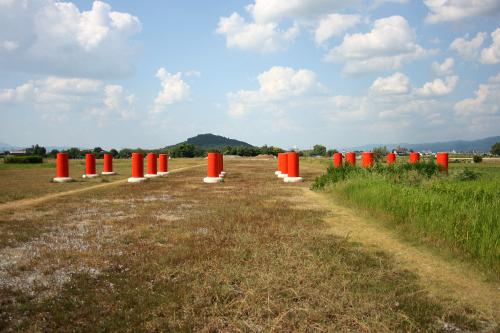 原っぱの中に建物跡を示す柱が並ぶ「藤原宮跡」