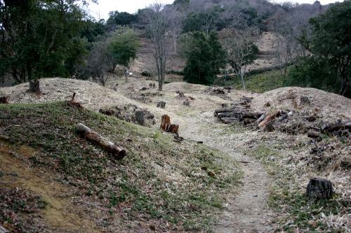 和歌山県の「岩橋千塚古墳群」とか