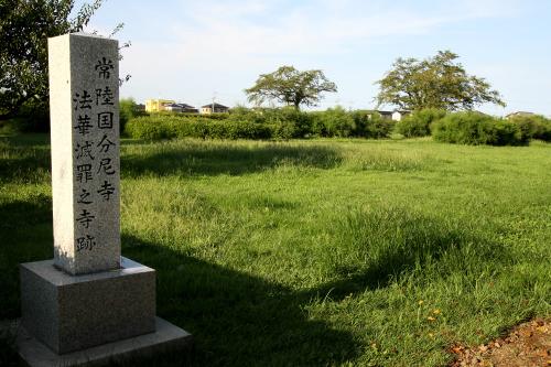 紛うことなき原っぱである「常陸国分尼寺跡」