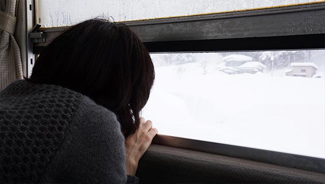 雪まみれの家、雪まみれの木、雪まみれの川、雪まみれの山、雪まみれの地面・・・とにかく雪まみれだ!