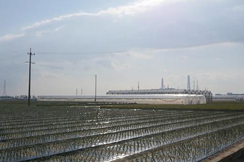 愛知県の海沿い碧南市。農地と工業地帯の中を走る