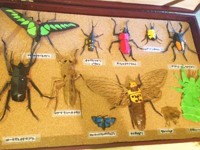 細部までよく観察して作っている昆虫標本。羽のカットがお見事。
