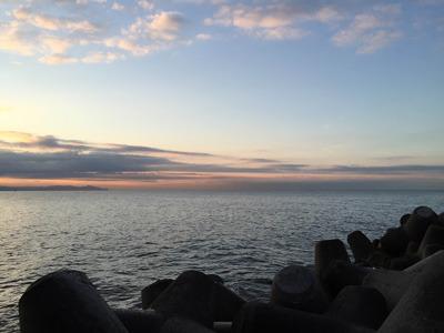 瀬戸内海といえば明石の鯛が有名だが、おかしな鯛もたくさんいるのだそうだ。