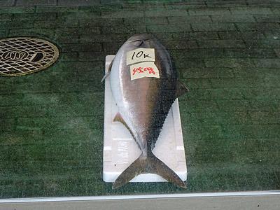 10キロのブリ!45,000円!