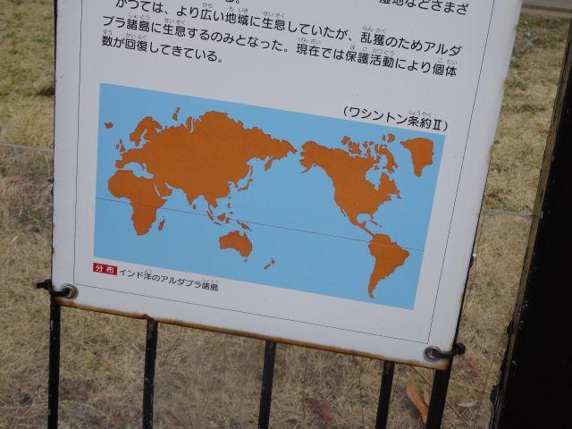 動物園の動物説明で見る地図にも4島以外の島はなかった