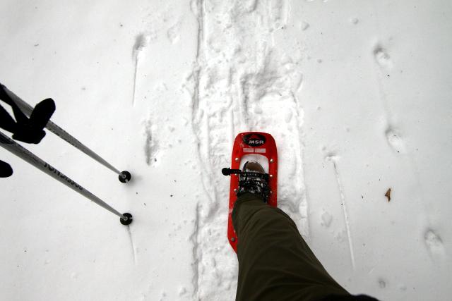 雪に足が沈まず、なおかつ雪を噛んでしっかり進める