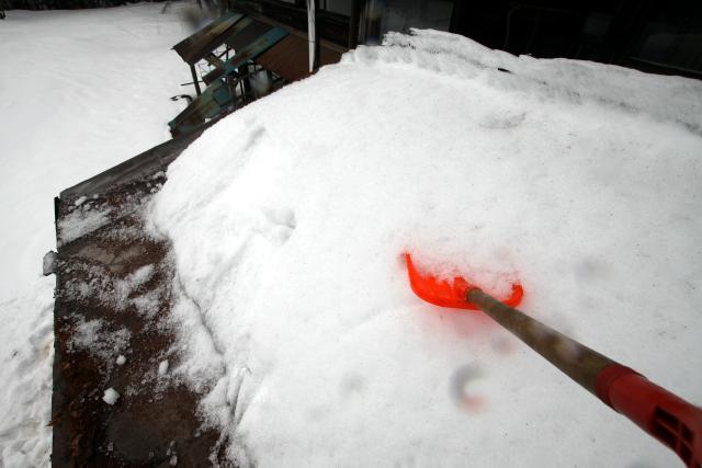私も早速上がって雪をかいてみたのだが、この雪、物凄く固い!