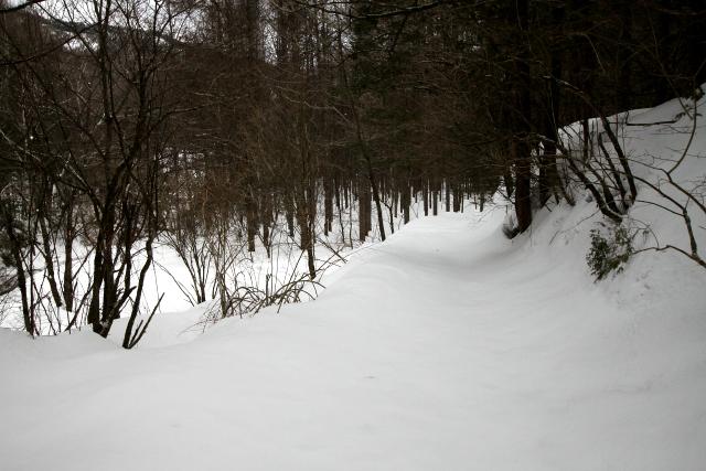 集落を出て、まっさらな雪道を歩く