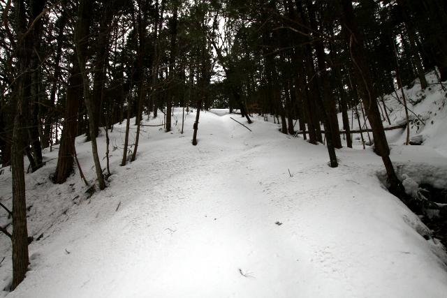 参道も雪に埋もれていたが、たぶんこっちだろうと進んで行く