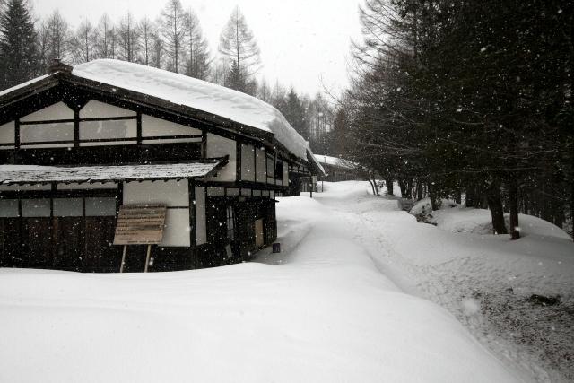 ちょっとしんみりした気分で集落に戻ると、ちらちらと雪が降ってきた