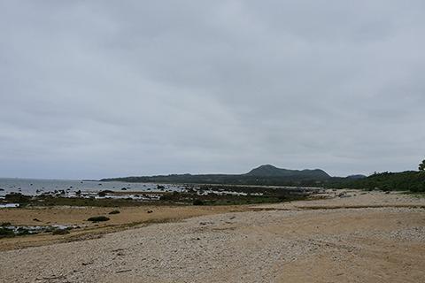浜に出た。こんな自然もりもりのところで移住はしんどい