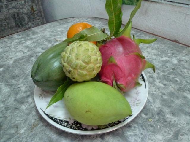 皿には5つの果物が載っていた。