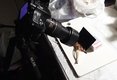 刺された傷を治療したバンドエイドの箱を使ってトゲ撮影。