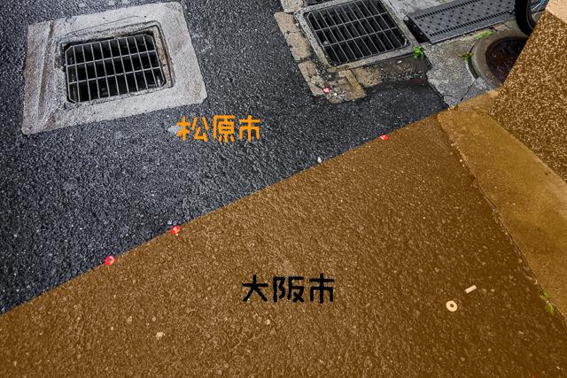 敷地境界を示す鋲がやたら打ってあった。つまりこういうことなんだと思う(たぶん)。