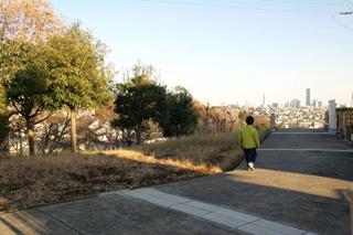 舗装された小路や桜の並木もあって、まるで町の中