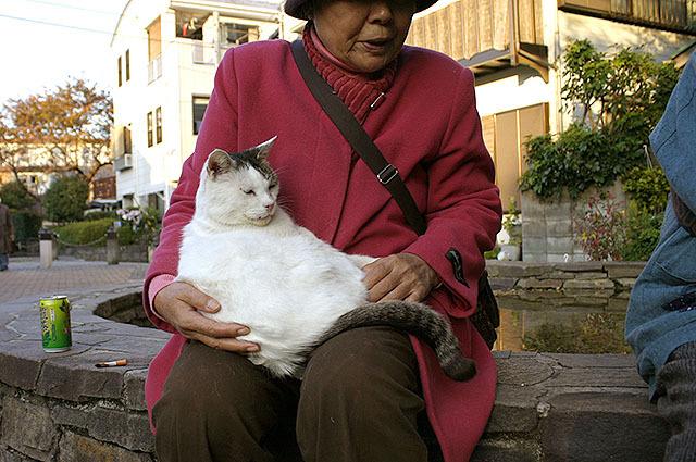 アサリを抱くおばちゃん。