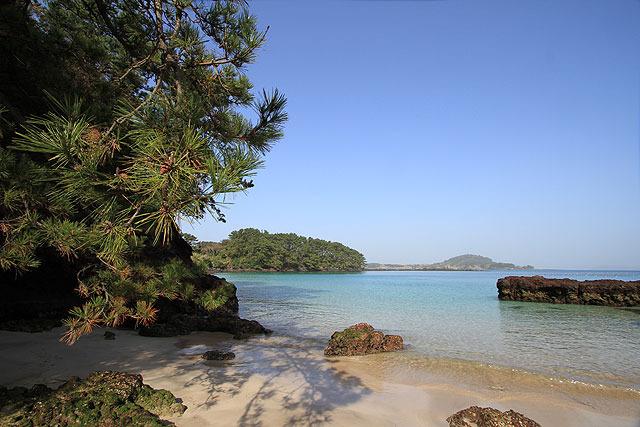 その他、島内のあちこちを案内して頂いた。