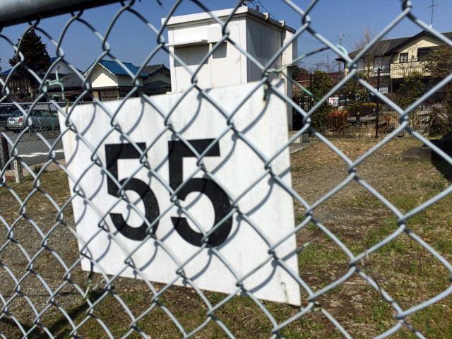 柵に番号がついていた。府中のは51番だったけど間に3つ立坑あるとかじゃないよね