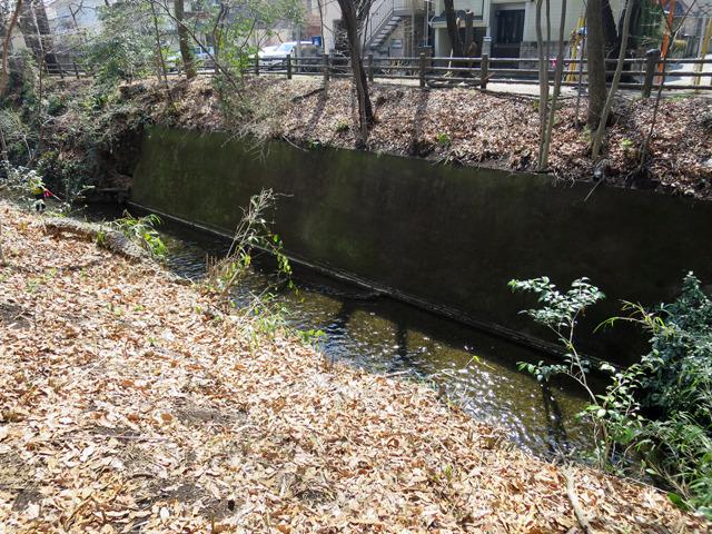 玉川上水の岸は交差部分だけコンクリート造りだった